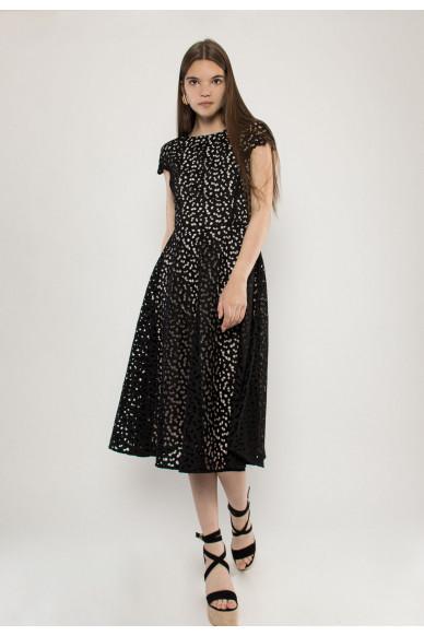 Cristel lace dress